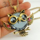 Owl Jewelry Owl Necklace Free Shipping