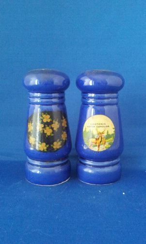 VINTAGE SALT AND PEPPER SHAKERS SET NEW YORK NORTH CAROLINA
