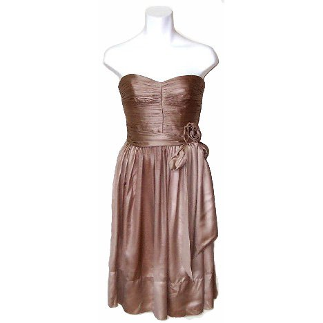 BCBG MazAzria Latte Chiffon Dress