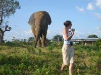 Ghana - Cultural and Wildlife Safari 9 days