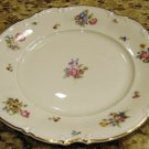 Hutschenreuther MAYFAIR Porcelain Dinner Plate