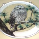 National Wildlife, Snowy Owl Sun Catcher for Window Display