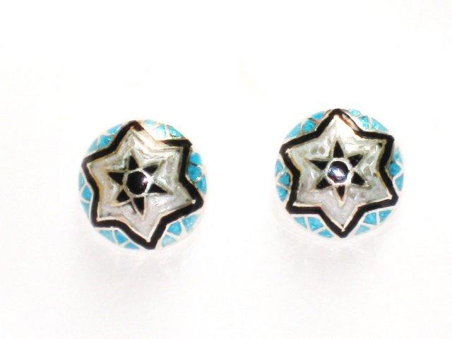 MN193 Enameled Earrings in Sterling Silver