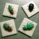 Ceramic Magnets   Assorted  Bugs