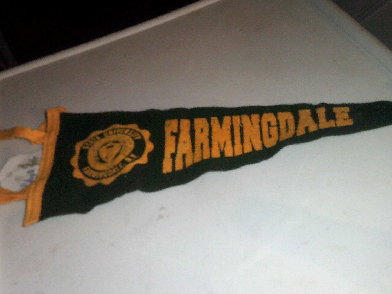 "15"" Farmingdale Collegiate Pacific Collge Pennant"