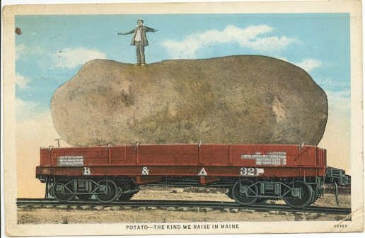 Giant Maine Potato on B & A Railroad Car Postcard - 1931 train  #0203