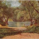 Wooded scene with bridge, Jackson Park, Chicago, IL postcard circa 1910 #0199