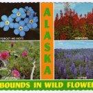 Alaskan Wild Flowers Postcard Forget-Me-Nots Fireweed Wildroses Lupine #0400