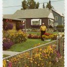 Flowers grown by Joe Hembreiker 1960s Postcard Fairbanks, Alaska  #0403