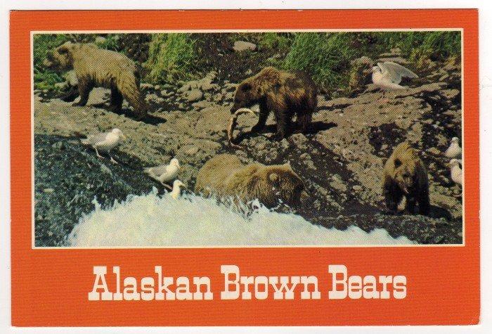 Alaskan Brown Bears fishing Postcard  photo John S. Crawford