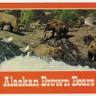 Alaskan Brown Bears fishing Postcard  photo John S. Crawford