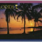 Florida Sunset at water edge Palm Trees sail boats Postcard Werner J. Bertesh Photo FL FLA #0528