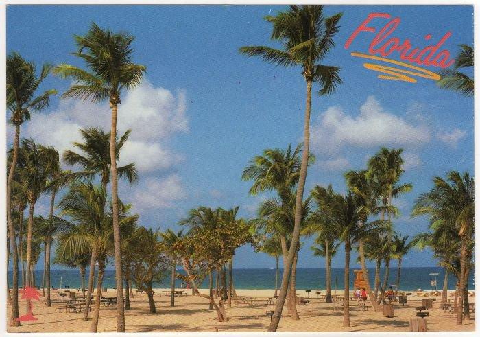 Blue Atlantic, Palm Trees and White Beaches Florida Postcard Photo by John Gordash  FL FLA #0527