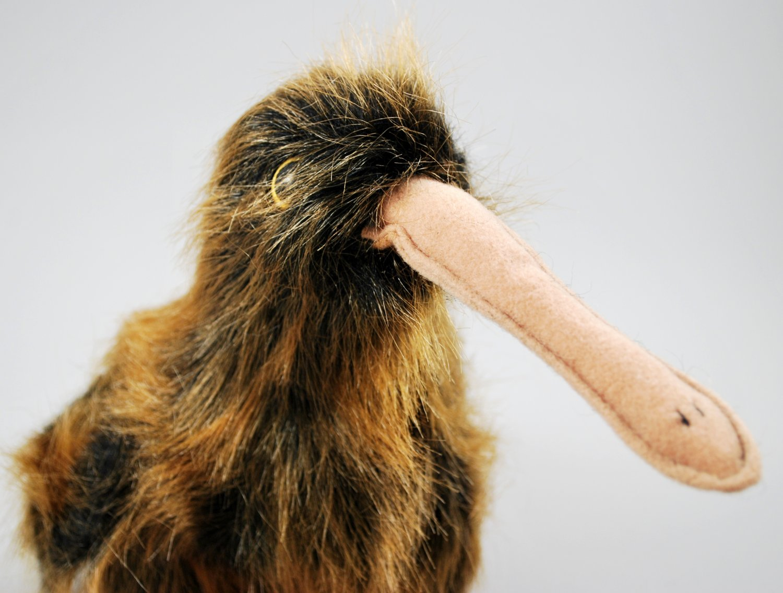 Retired Beak The Kiwi Bird Plush Ty Beanie Buddy Style 9301