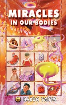 Miracle in our Bodies