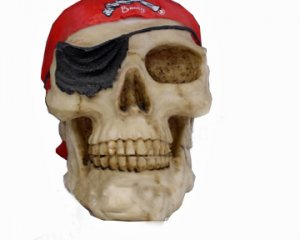 Surrender the Booty Pirate Skull - Heavy Poly Resin - Great for Partys!