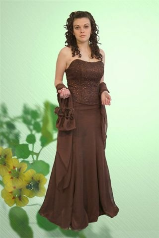 Lovely Two Piece Bridesmaid or Prom Gown-All Sizes