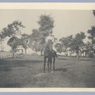 Vintage Photo HORSE AND RIDER Buggy in Background