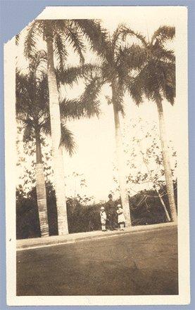 Vintage Photo SOLDIER Palm Trees WWI Children DOLL 1910
