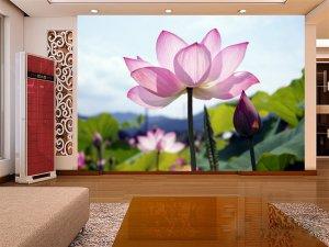 Wall Mural Wall Decor Wall Art--Lotus