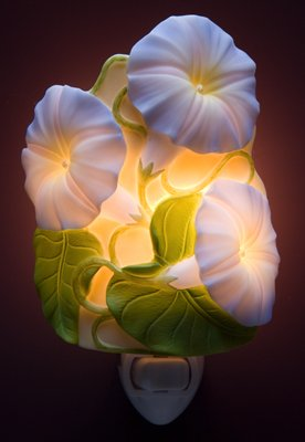 Morning Glory Nightlight - Ibis & Orchid Designs