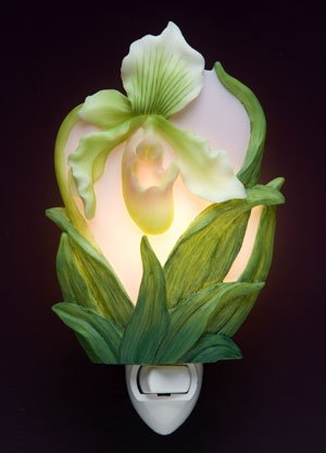 Lady Slipper Orchid Nightlight - Ibis & Orchid Designs
