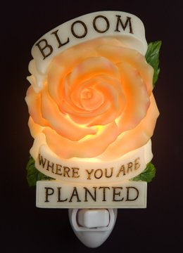 Bloom Where Planted Nightlight - Ibis & Orchid Designs