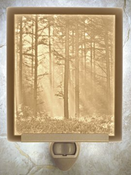 Woodland Sunbeams Flat Lithophane Nightlight