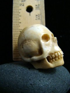 ANTIQUE ' MEMENTO MORI ' HAND CARVED SKULL - NUNS RELIC FATHER DAMIEN HAWAII