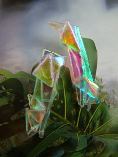 "DICHROIC GLASS "" BAMBOO ICE "" PIERCED EARRINGS   WEARABLE ART  HYPO-ALLERGENIC"
