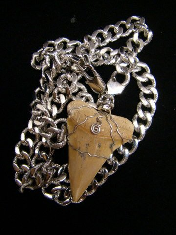 "MAKO FOSSIL SHARK TOOTH STAINLESS STEEL CHAIN NECKLACE 23.5""  - PEWTER SKULL BEAD"